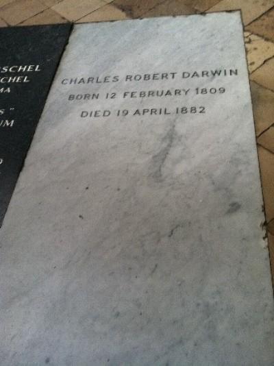 Hcallas(2011). 찰스 다윈의 비석. 다윈의 진화론은 기존 종교의 근간을 흔들었지만, 영국인은 그를 웨스트민스트 성당에 묻어주었다. -wikimedia(cc)